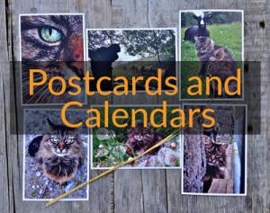 PageLines-postcardspromo.jpg